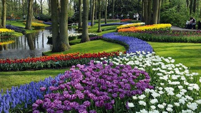 progettare e realizzare aiuola giardino