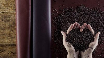 WineLeather pelle vegetale e ecosostenibile