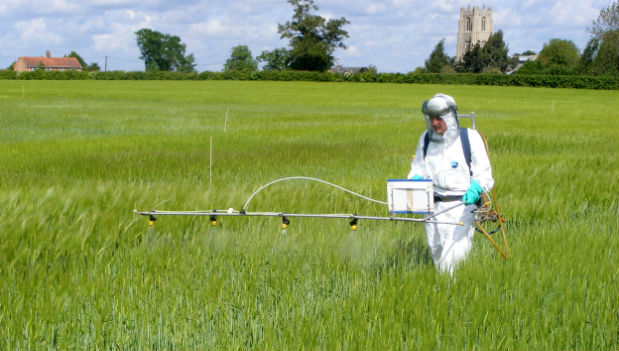 Uso del Glifosato in agricoltura