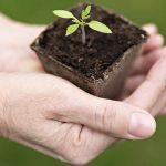 Earth Day: prendiamoci cura del nostro Pianeta