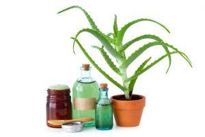 Aloe vera crema fai da te con olio di argan e olio di mandorle