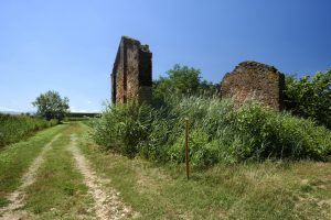 Trekking Italia sulla via Francigena