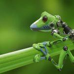 Robot green: nasce la robotica eco-friendly