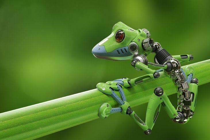 Robot green ecosostenibile