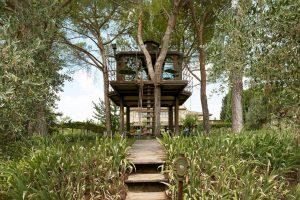 Casa sull'albero Toscana