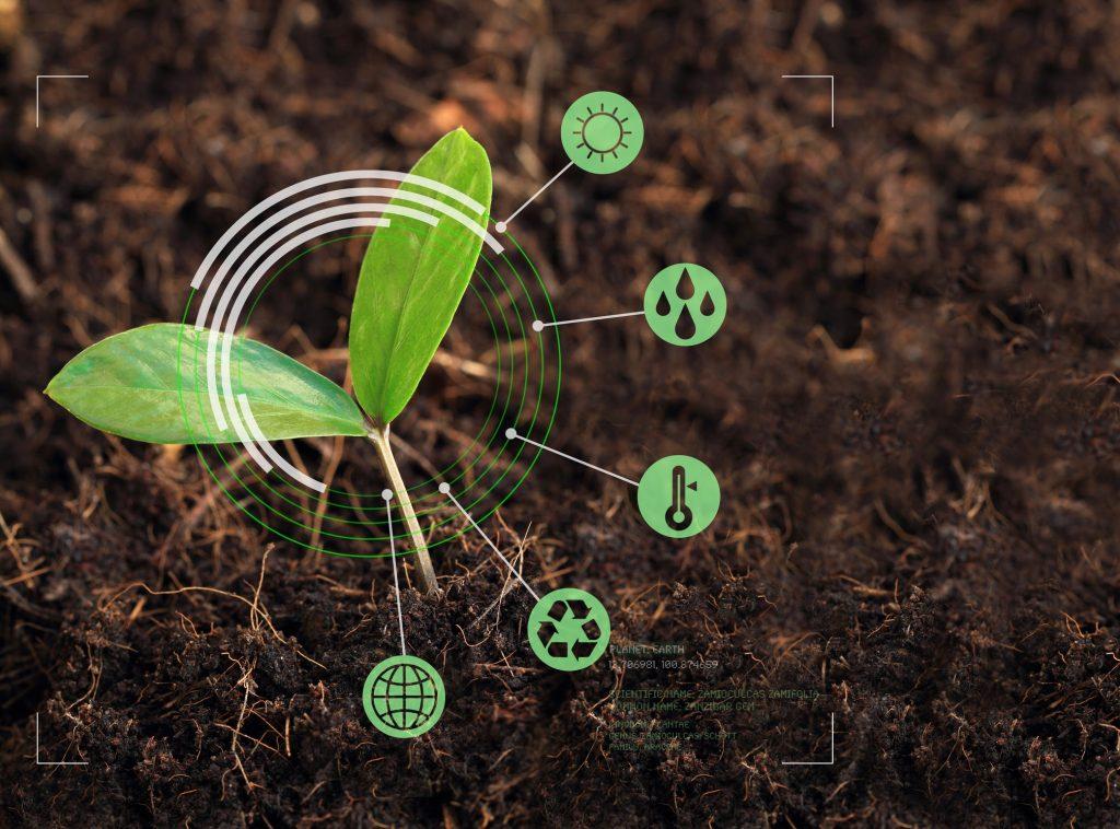 Agricoltura biodinamica vantaggi