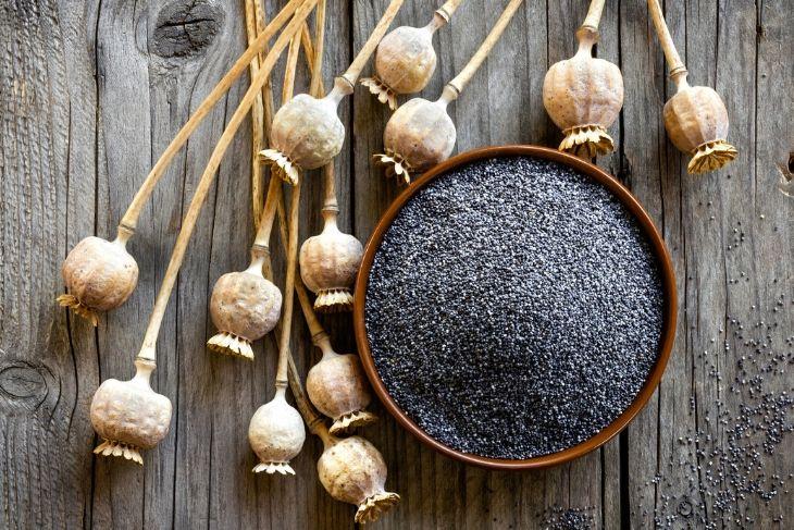 Semi di papavero: proprietà, utilizzo e alimentazione