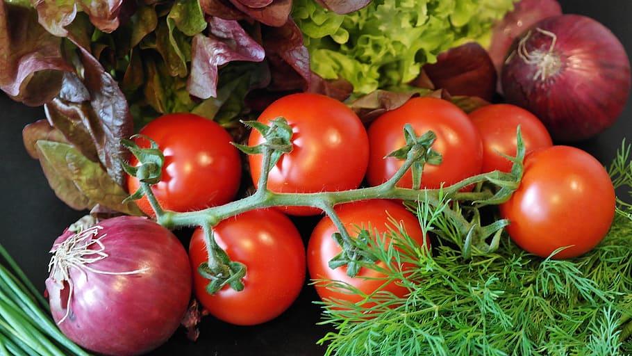 Come coltivare pomodori
