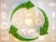 Sviluppo sostenibile: definizione e obiettivi