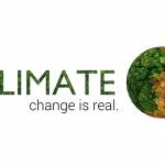 Cambiamenti climatici: storia, cause e conseguenze