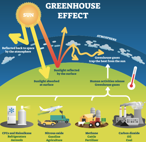 Cambiamenti climatici cause