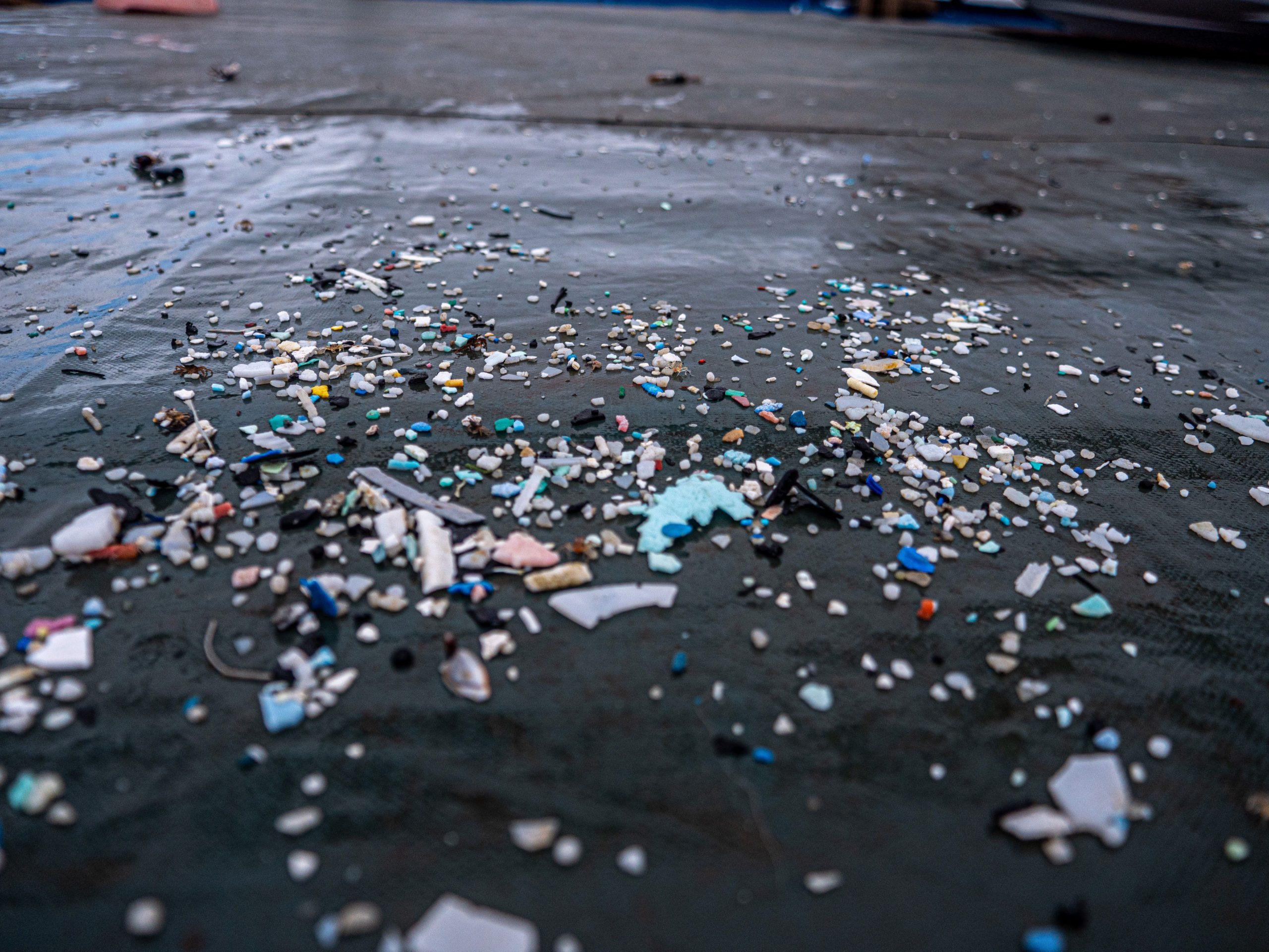 Pacifico plastica