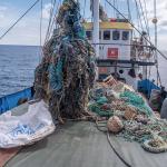 Ocean Voyages Institute: raccolte oltre 100 tonnellate di plastica e reti nel Pacifico