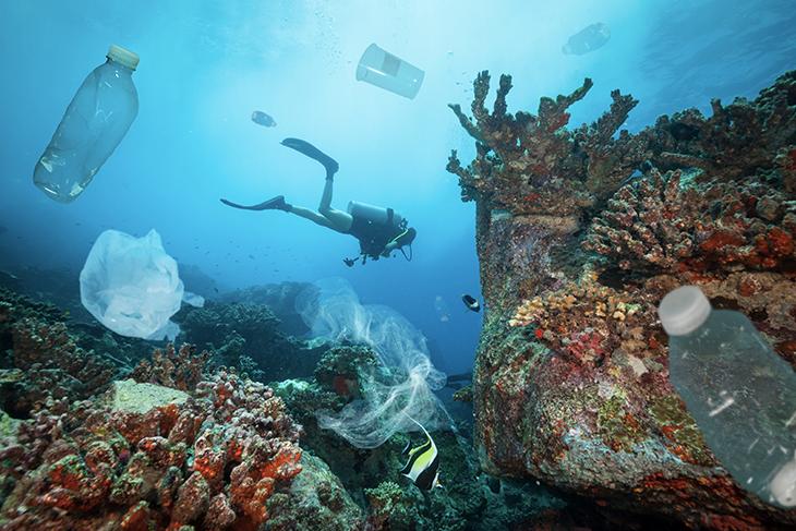 """Giornata Mondiale degli Oceani: centinaia di sub sui fondali per il progetto """"Spazzamare"""""""