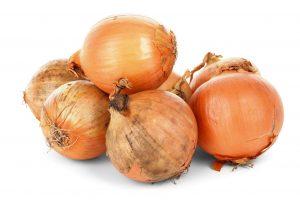 ortaggi come coltivare le cipolle