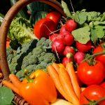 Ortaggi: i 10 più facili per l'orto