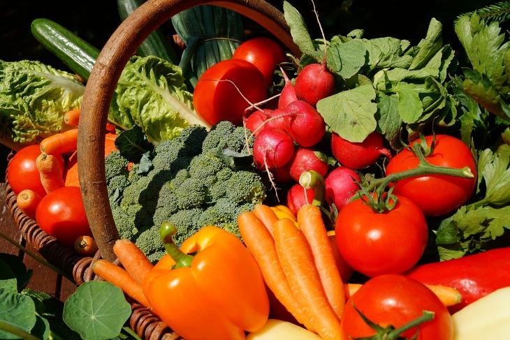 ortaggi da coltivare nell'orto