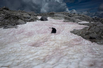 Alpi scioglimento ghiacciai
