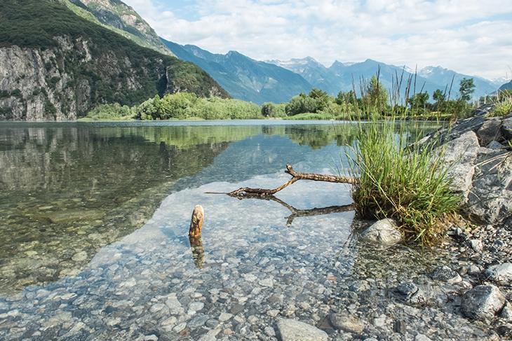 Lago di Mezzola e torrente