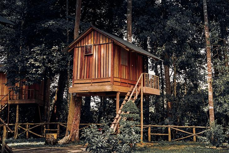 Garden casa albero