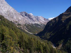 percorsi in mountain bike parco nazionale dello stelvio