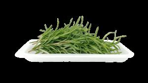 segnaposto di natale fai da te con piante aromatiche