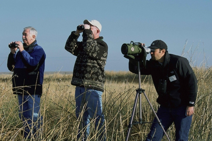 birdwatching i posti più belli in Italia