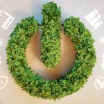 Stile di vita sostenibile: 5 consigli per iniziare a condurre una vita green