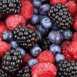 Coltivare frutti di bosco: tutti i consigli per farlo a casa