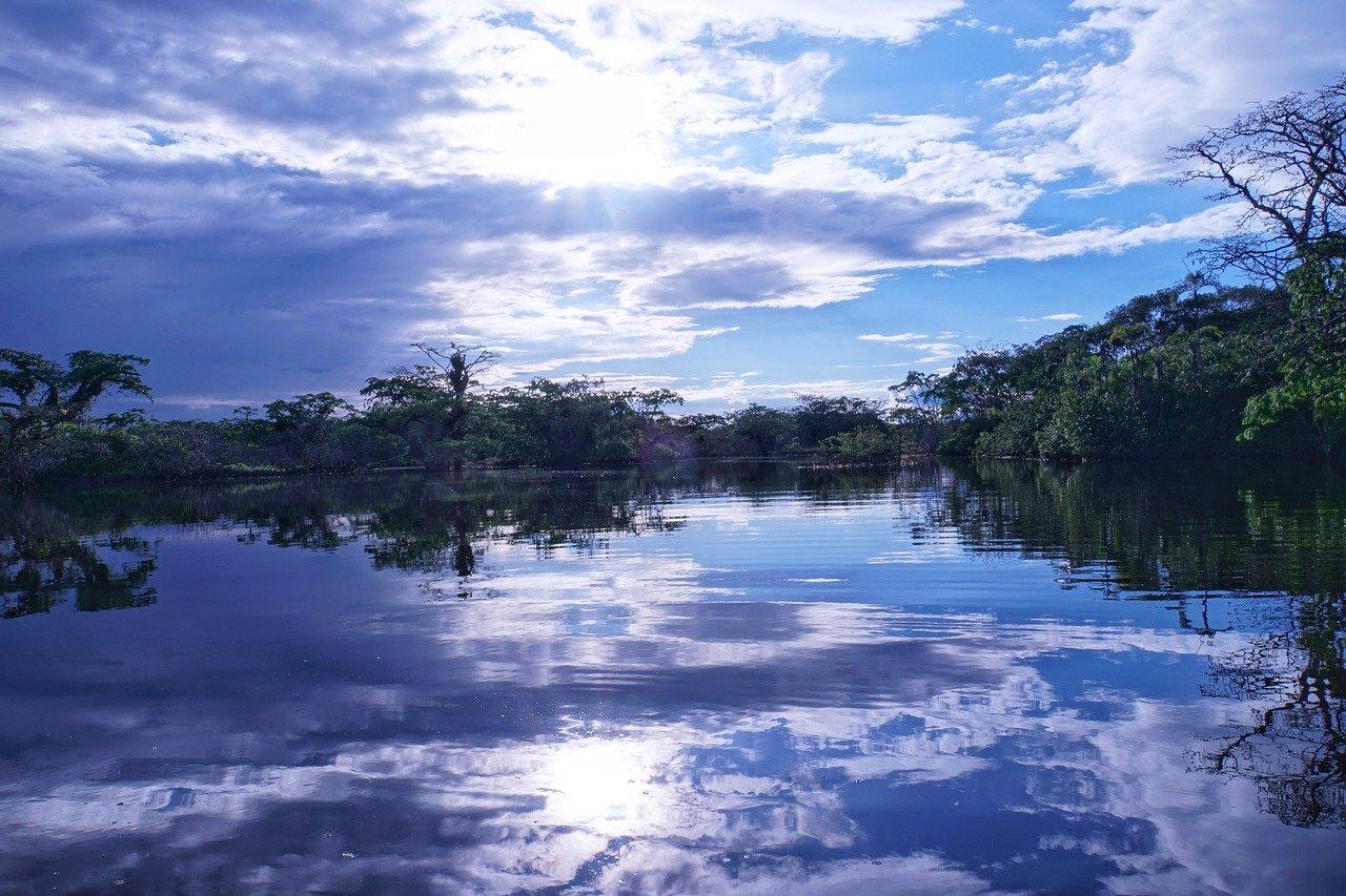 deforestazione amazzonia 2064