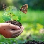 Giornata internazionale della biodiversità: tutela e green economy